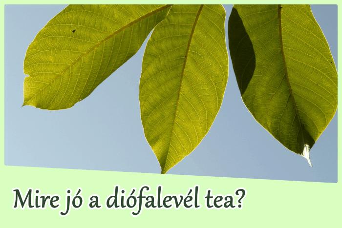 Diófalevél tea: mire jó?